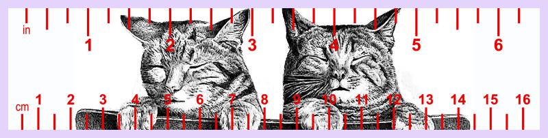Two kitties red ruler purple border-jpg