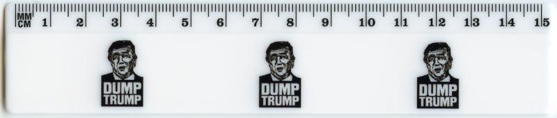 Dump Trump-cropped