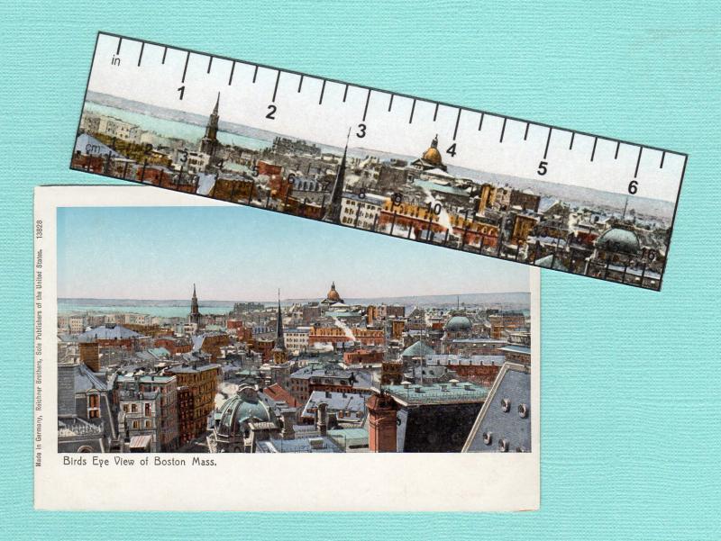 Boston birds eye pc w ruler