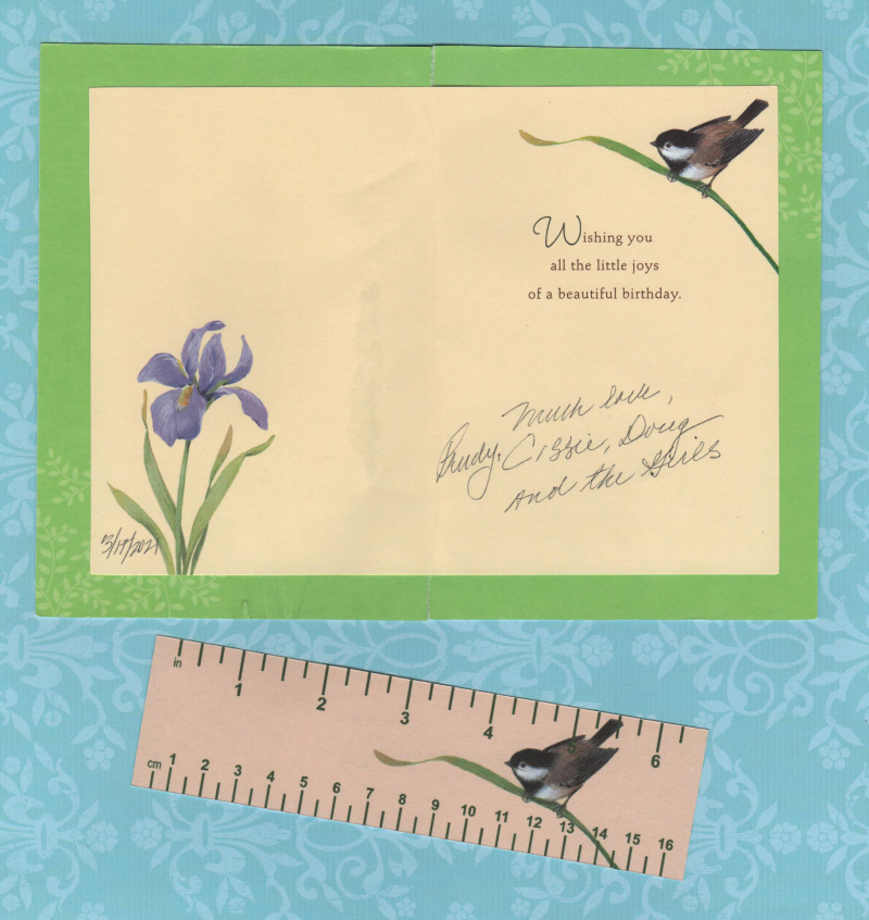 Chickadee-card-and-ruler